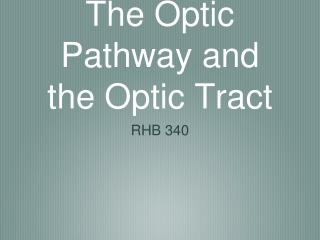 The Optic Pathway and the Optic Tract