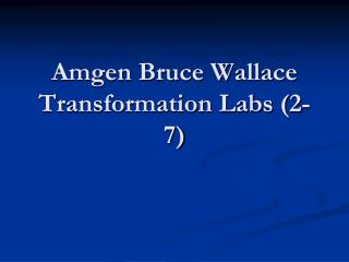 Amgen Bruce Wallace  Transformation Labs (2-7)