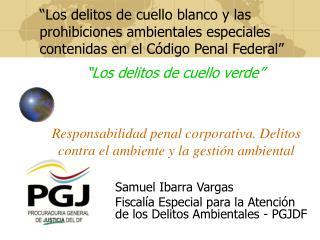 Responsabilidad penal corporativa. Delitos contra el ambiente y la gesti�n ambiental