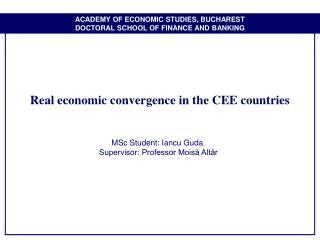 Dissertation Ppt Finance
