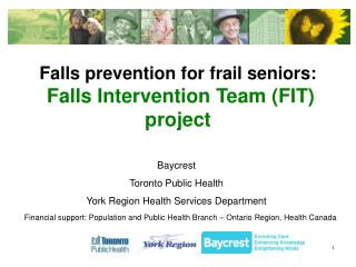 Falls prevention for frail seniors:  Falls Intervention Team (FIT) project