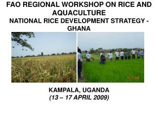 FAO REGIONAL WORKSHOP ON RICE AND AQUACULTURE NATIONAL RICE DEVELOPMENT STRATEGY - GHANA