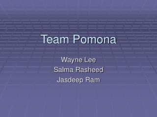 Team Pomona