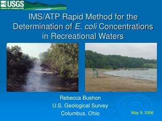 IMS/ATP Rapid Method for the Determination of  E. coli  Concentrations in Recreational Waters