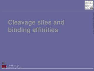 Cleavage sites and binding affinities