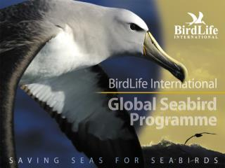 The Global Seabird Programme...