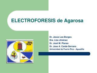 ELECTROFORESIS de Agarosa