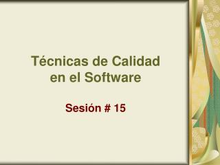Técnicas de Calidad  en el Software Sesión # 15