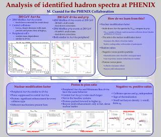 Analysis  of  identified hadron  spectra at PHENIX