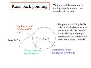 Kaon back pointing