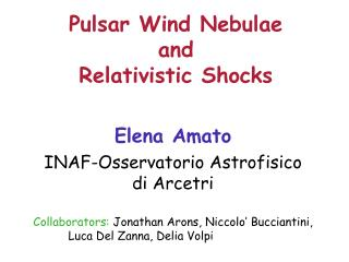 Pulsar Wind Nebulae  and Relativistic Shocks
