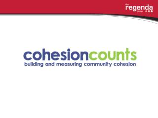 How to develop a community              cohesion project