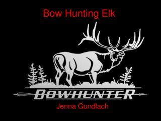 Bow Hunting Elk