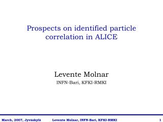 Prospects on identified particle correlation in ALICE
