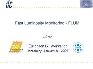 Fast Luminosity Monitoring - FLUM