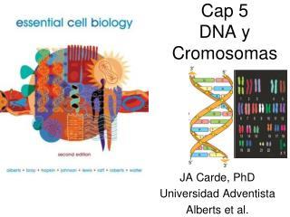 Cap 5  DNA y  Cromosomas