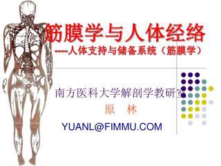 筋膜学与人体经络 ---- 人体支持与储备系统(筋膜学)