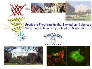 Graduate Programs in the Biomedical Sciences Saint Louis University School of Medicine