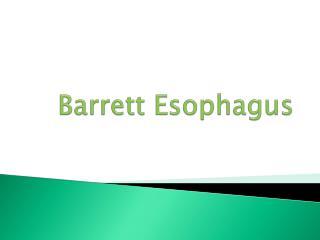 Barrett Esophagus