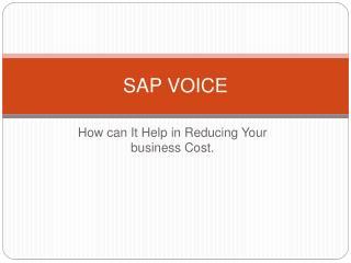 SAP Voice - Basic Concepts & Features