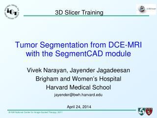 Tumor Segmentation from DCE-MRI with  the  SegmentCAD  module