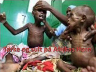 Tørke og sult på Afrikas Horn