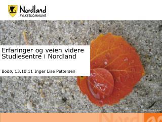 Erfaringer og veien videre Studiesentre i Nordland Bodø, 13.10.11 Inger Lise Pettersen