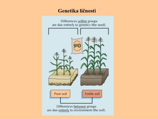 Genetika ličnosti