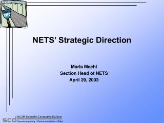 NETS' Strategic Direction