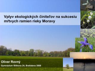Vplyv ekologických činiteľov na sukcesiu     mŕtvych ramien rieky Moravy