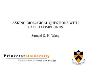 ASKING BIOLOGICAL QUESTIONS WITH CAGED COMPOUNDS Samuel S.-H. Wang