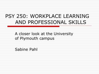 PSY 250: WORKPLACE LEARNING 	AND PROFESSIONAL SKILLS