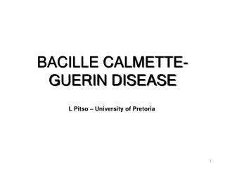 BACILLE CALMETTE-GUERIN DISEASE