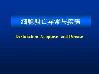 Dysfunction  Apoptosis  and Disease