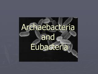 Archaebacteria  and  Eubacteria
