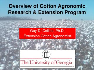 Guy D. Collins, Ph.D. Extension Cotton Agronomist