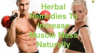 Herbal Remedies To Increase Muscle Mass Naturally