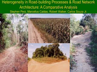 Introduction Roads help define the spatial geometry of forest fragmentation