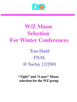 W/Z Muon  Selection  For Winter Conferences