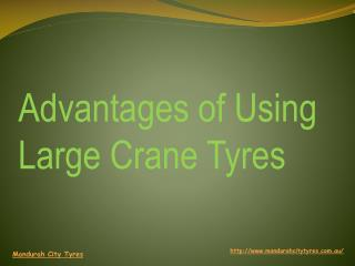 Advantages of Using Large Crane Tyres