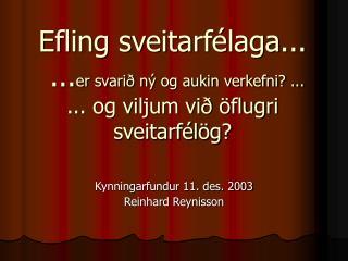 Kynningarfundur 11. des. 2003 Reinhard Reynisson