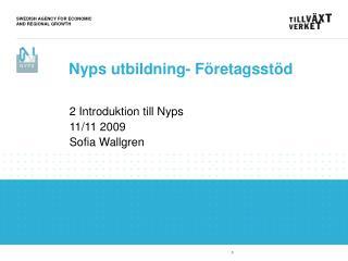 2 Introduktion till Nyps 11/11 2009 Sofia Wallgren