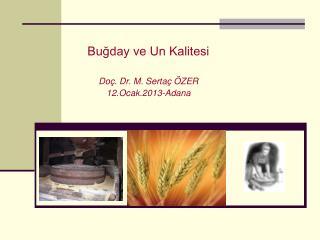 Buğday ve Un Kalitesi Doç. Dr. M. Sertaç ÖZER 12.Ocak.2013-Adana