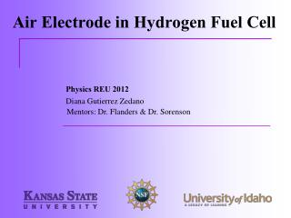 Air Electrode in Hydrogen Fuel Cell