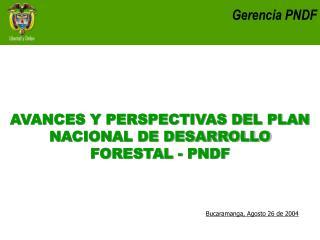 Gerencia PNDF