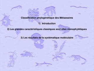 Classification phylogénétique des Métazoaires Introduction