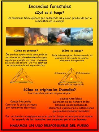 Incendios forestales ¿Qué es el fuego?