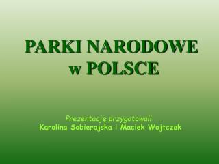 Prezentację przygotowali: Karolina Sobierajska i Maciek Wojtczak