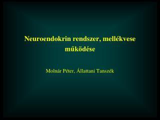 Neuroendokrin rendszer, mell ékvese működése Moln ár Péter, Állattani Tanszék