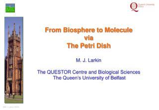 From Biosphere to Molecule via